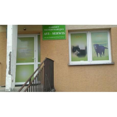 Oklejanie okien folią OWV, reklama na szyby okienne, witryny sklepów